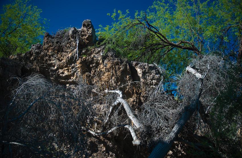 cliff...-120080424.jpg