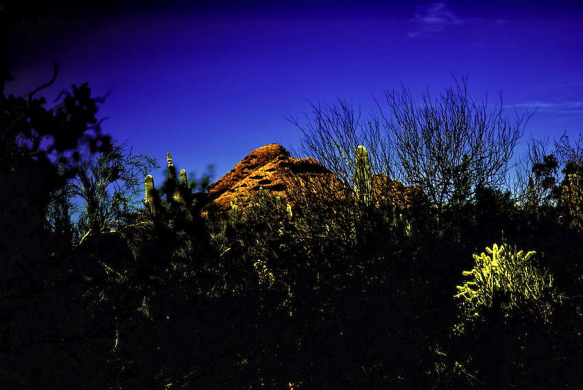 Papago Butte...-120080226.jpg