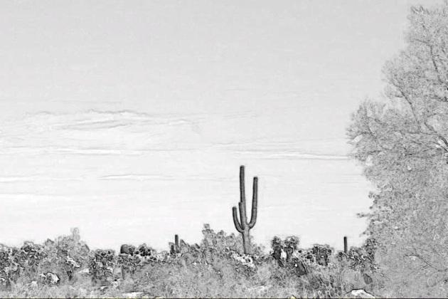 desert-120090120